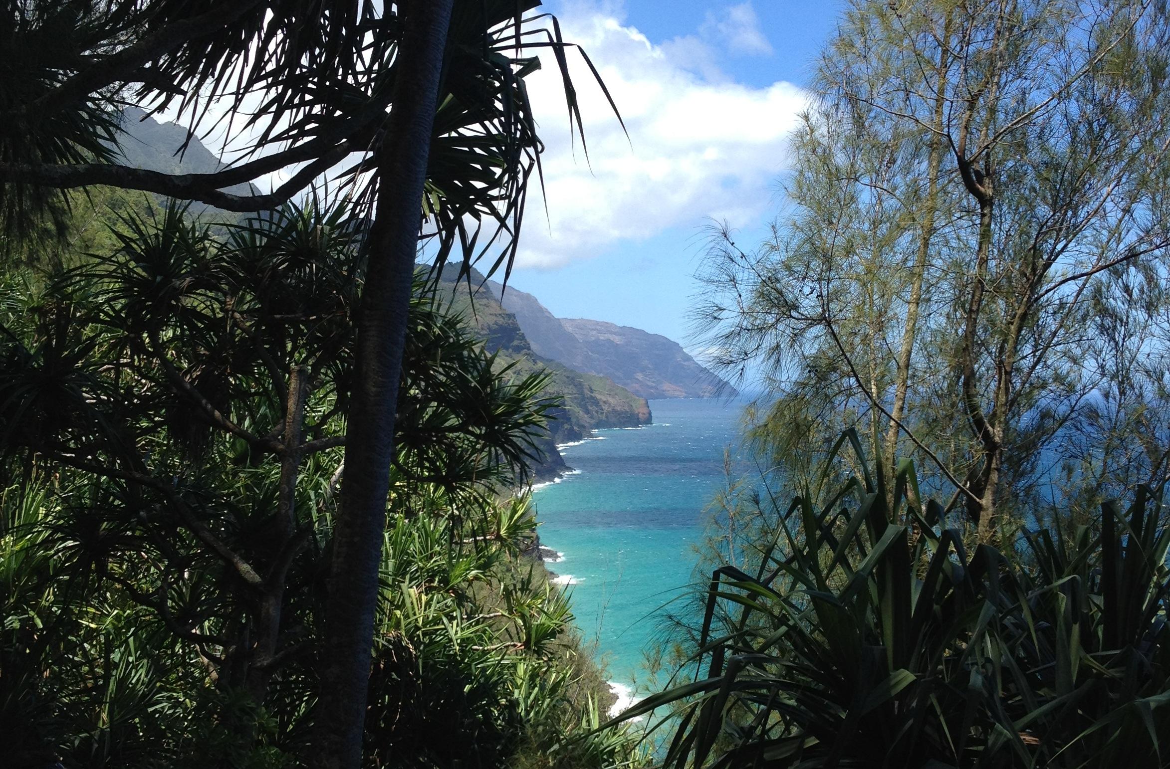 Kauai Img_3057